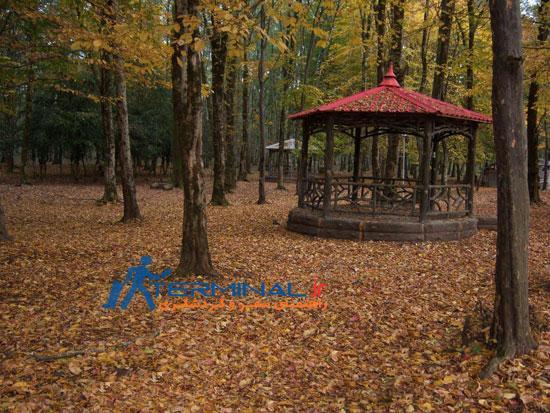 پارک جنگلي گيسوم و زيبايي هاي آن